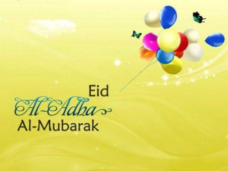 eid ul adha wonderful pictures